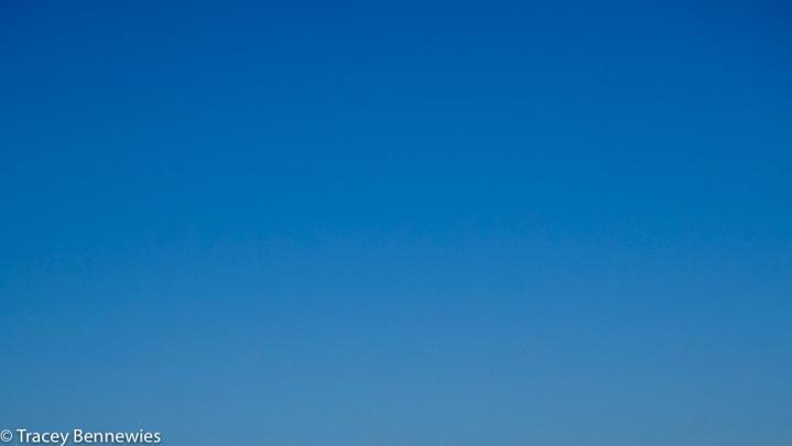 Skys-08905