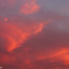 Skys-09000