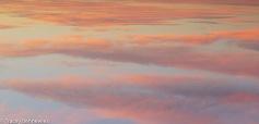 Skys-09506