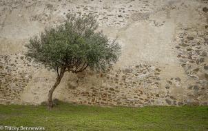 Spain Blog-09085