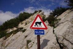 Spain Blog-09219