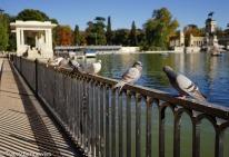 Spain Blog 2-09644