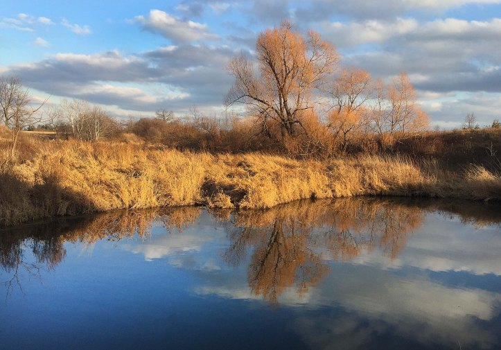 Dec 30 (low) - on golden pond