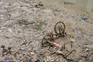 Canal clean-up-01276