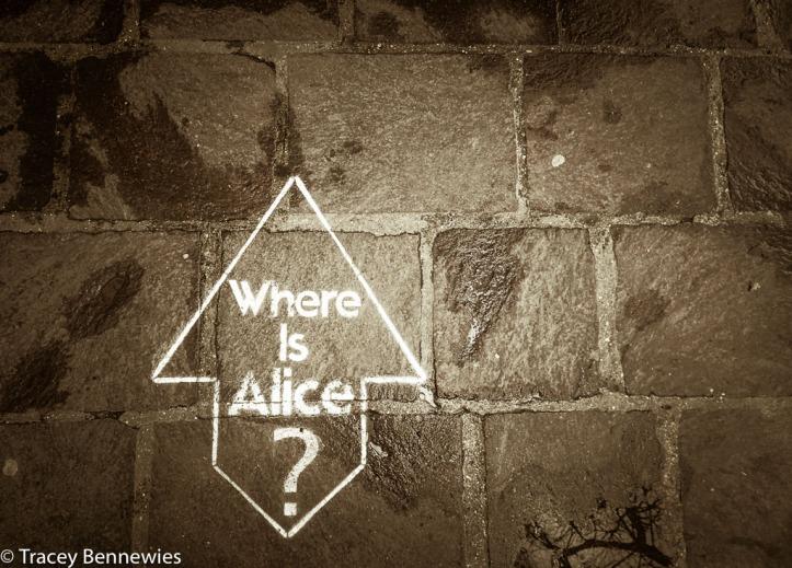 Alone-3220364