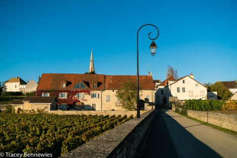 The backside of the house we rented in Meursault. We had the upper left hand quadrant.