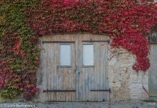 burgundy-wpress-08183