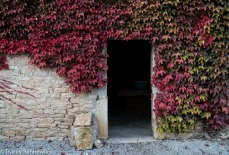 burgundy-wpress-08184