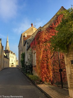 The road right outside our yard that leads into the town of Meursault